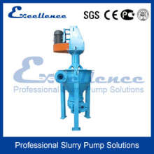 Centrifugal Froth Slurry Pump Design (EVF-2Q)