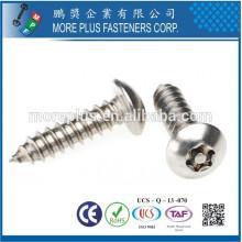 Made in Taiwan M3.5X18 Edelstahl Natur Torx Drive Selbstschneiden Schraube