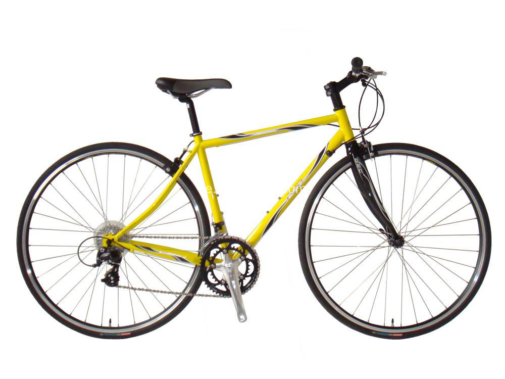 Kvinnor 700c Fixie Bike