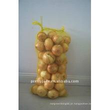 Recém-produziu cebola fresca chinesa