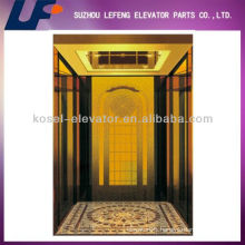 Small Luxury Residential Elevator