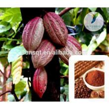 Увеличение пениса половые продукты сырые какао порошок