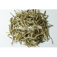 Yunnan White Silver Needle Tea