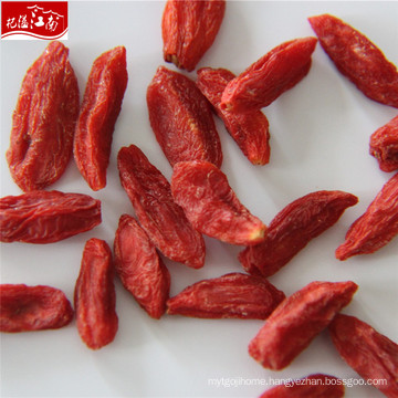 Factory supply wholesale conventional berries goji