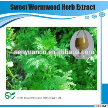 Meilleure vente Sweet Wormwood Herb Extract