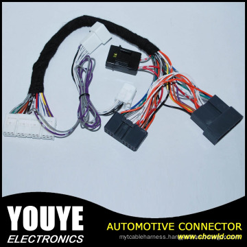 Male to Female Custom 2 Pin Window Wire Harness