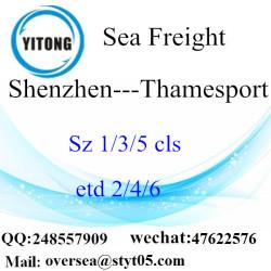 Shenzhen Port LCL Consolidation To Thamesport