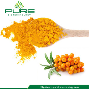 GMP Standard Sea Buckthorn Berry Extract Powder