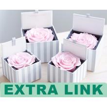 Alibaba Qualitäts-kundenspezifischer Logo-Papptuch 1 Rosen-Blumen-Tuck-in Behälter