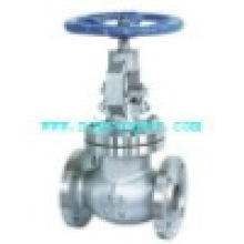 Satinless Steel 2way Globe Valve with Flanges