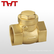 screw spring loaded air dn32 check valve brass