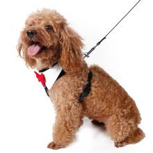 Elegante peppita designer filhote de cachorro colete arnês macia do cão de malha pet walking harness