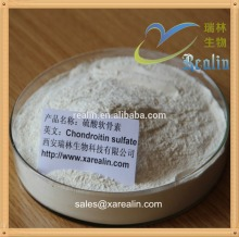 Arthritis Treatment Raw Material chondroitin sulfate powder for Joint care