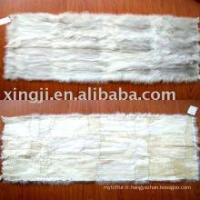 Plaque de ventre de renard bleu chinois