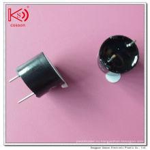 Plug-in 3V 5V DC Alarm 85dB Внутренний магнитный зуммер привода