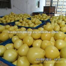 2012 miel fresca pomelo