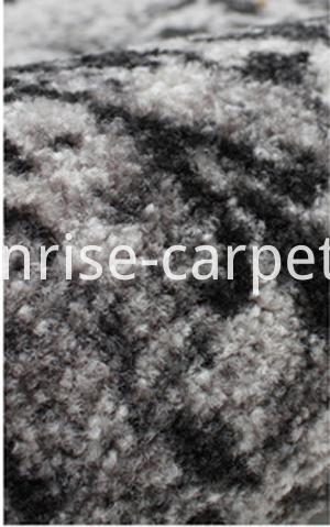 Micro nylon printing carpet