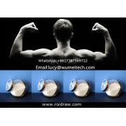 Pharmaceutical Intermediates Oxolinic Acid Powder