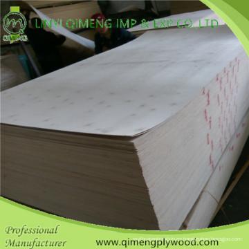 Precio competitivo de madera contrachapada de álamo con 1.6-18 mm