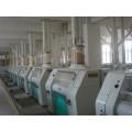 Fábrica de trigo / harina de maíz 200-350tpd