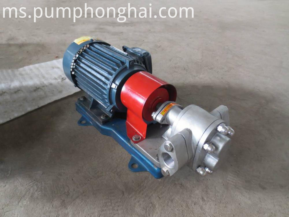 Food Oil Pump
