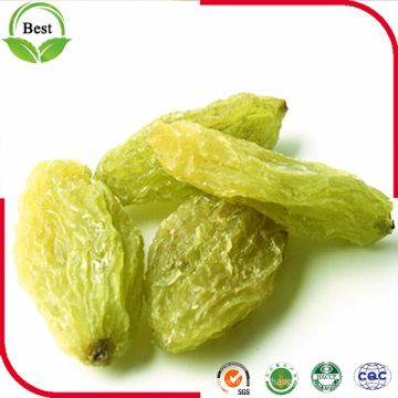 Top Quality Ad Dried Green Raisins for Sale