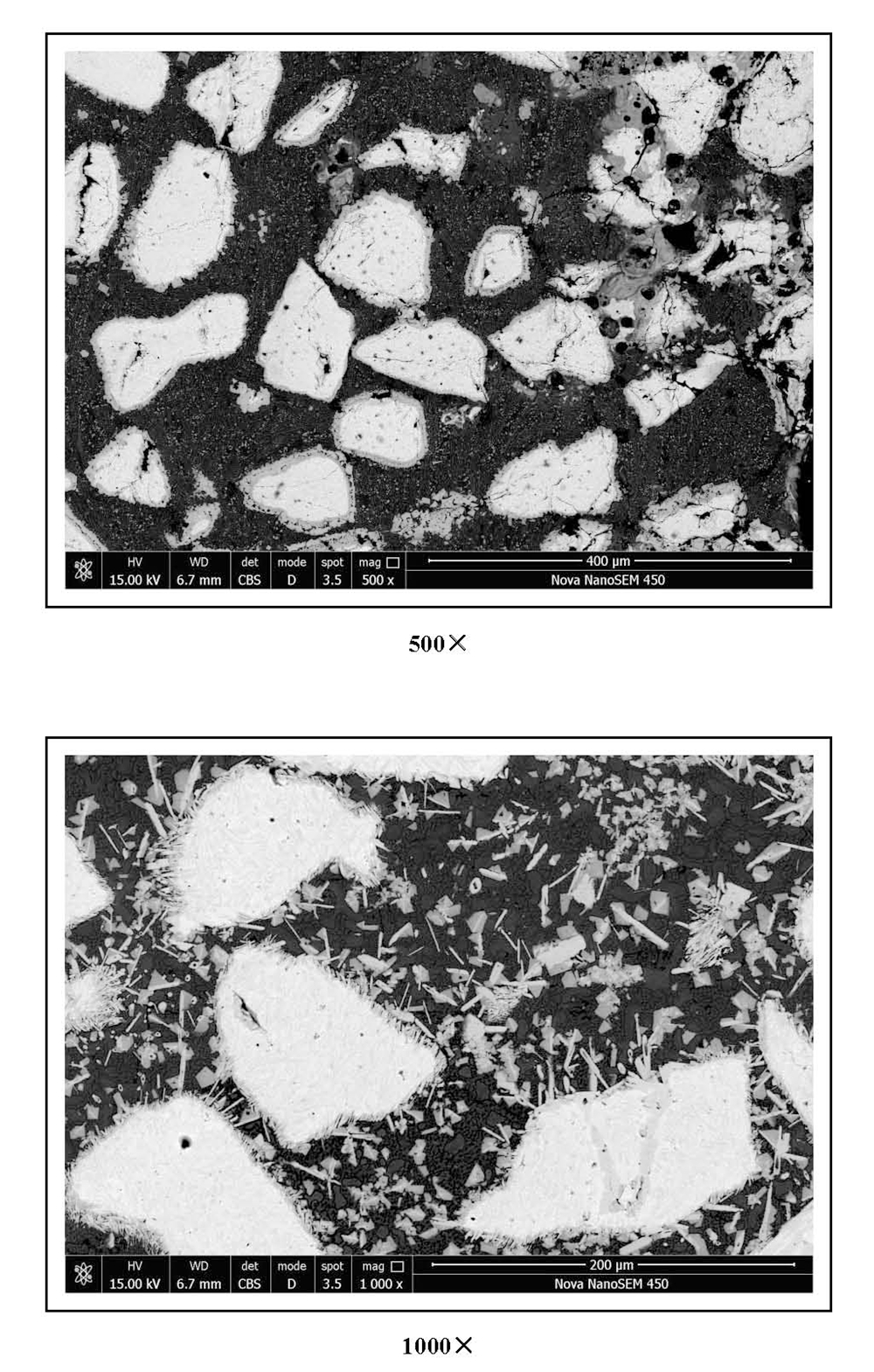 Metallographic Pictures_Tungsten Carbide Overlay Plate (1)