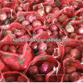 Vendedor de cebola vermelha 5-7cm