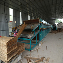 Pappelkiefer-Eukalyptus-Furnier-Walzentrockner