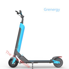 Self Balancing 2 Wheels Electrical Scooter 2000w