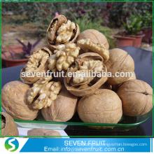 Venda quente de novas colheitas inteiras de casca de nogueira de frutos secos