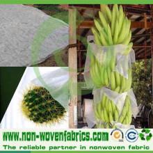 Environmental Polypropylene Spunbond Non Woven Fabric for Banana Cover