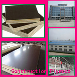 Construction Plywood/Plywood Sheet (DFW-Y898)