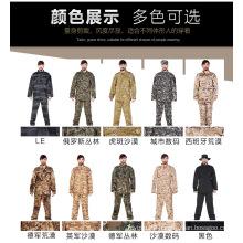 Camouflage Uniform Amry