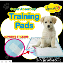 Clean pet pads 60x60cm