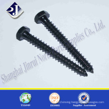 Hex Head Wood Screw with Black Zinc