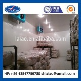 cold storage freezer