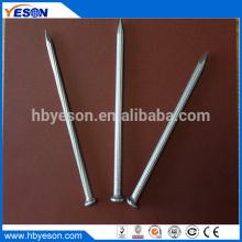 Clavo de conducción de hormigón electro galvanizado 1 pulgada
