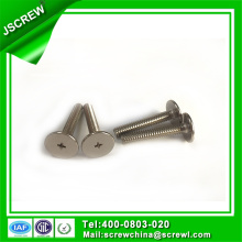 1/4 Stainless Steel Phillips Big Flat Head Screw
