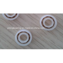 Anti-Acid 6003 2RS POM Plastic Ball Bearing with PTFE Cage
