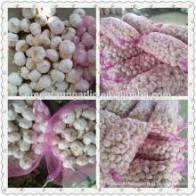 2015 nouvelle exportation d'ail blanc frais