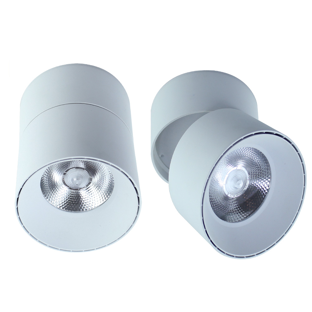 Surface Mounted Downlight Adjustable