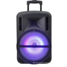 12inch Rechargeable Speaker / Bluetooth / USB / SD dans / Enregistrement / Lumières / F12-1 à distance