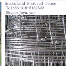 Пастбища Завязанные Загородки