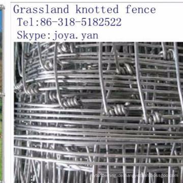 Grünland verknoteten Zaun