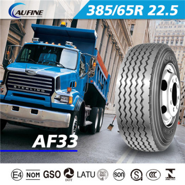 Pneu radial do caminhão e do ônibus, pneu sem câmara do caminhão com alcance de ECE DOT