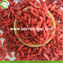 New Arrival For Sale Dried Conventional Goji Berries