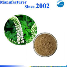 GMP factory supply pure natural black cohosh extract