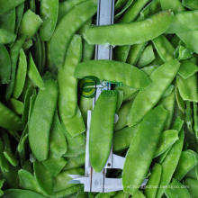New Season IQF Frozen Pea Pods