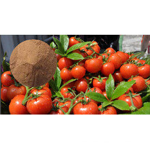 Amino Acid for Fertilizer Organic Nitrogen
